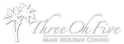 Maui Holiday Condo